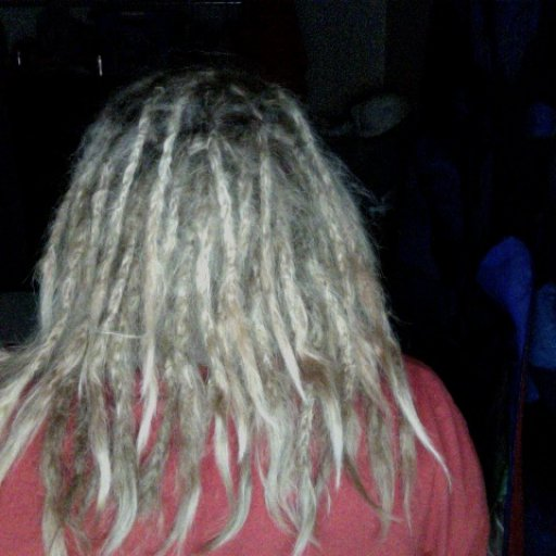 1 Week Old Dreads