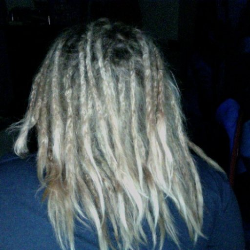 10 Day Old Dreads