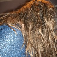 Back of Dreads