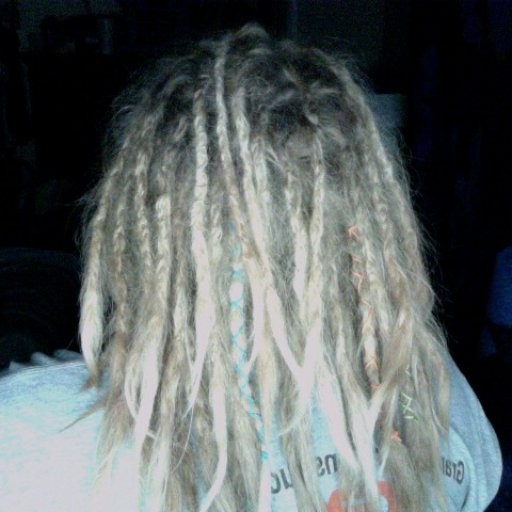 2 Week Old Dreads