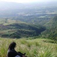 Tala grass