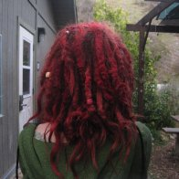 2 year old dreads