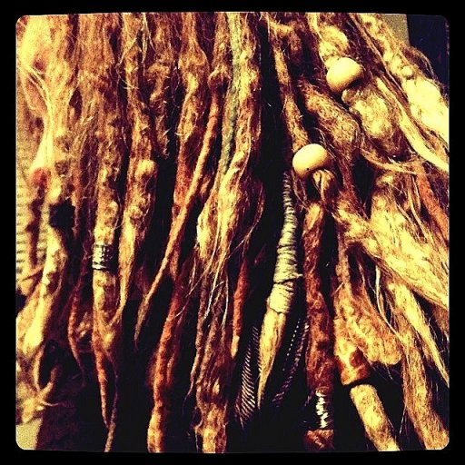 dreads close up