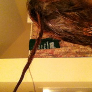 and 3 example. my hair will dread when wet.