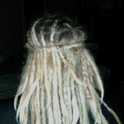 5 1/2 Week Old Dreads