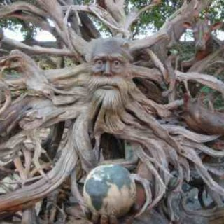 wow this is carved from drift wood how amazing