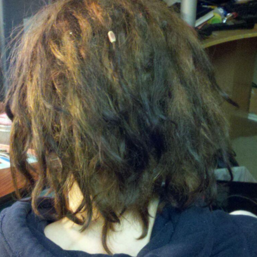 Dreads from behind. 3.5 weeks old