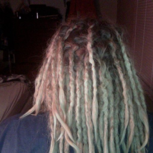 Almost 14 Week Old Dreadlocks