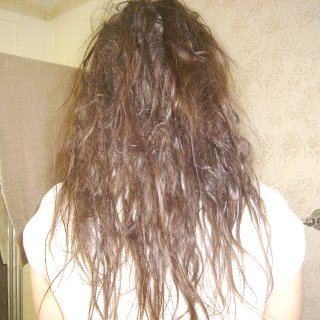 Beginning of April. Ten months, all natural, no ripping no backcombing no wax no gunk... (: Very happy so far!
