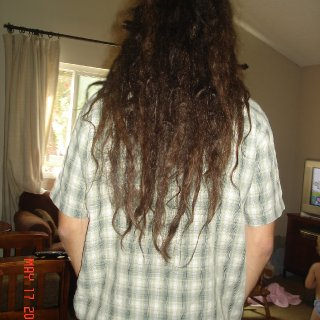 Roughly 3 months after back combing in