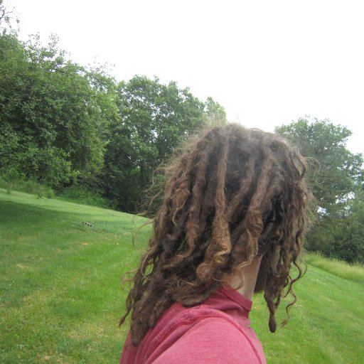 1 year natural freeform dreadlocks