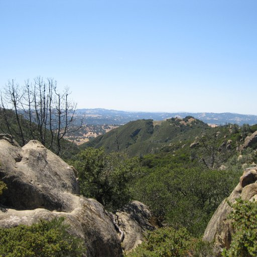 Climbing around Rock City at Mount Diablo