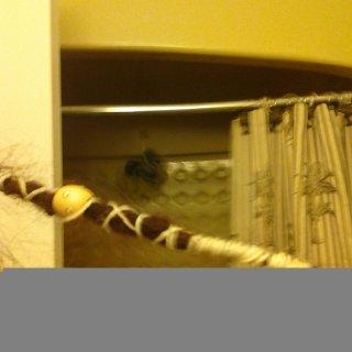 photo uploaded on july 7 2012