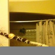 Photo uploaded on July 7, 2012