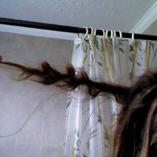 7/8/12, lots of loops, soon to be compressed into another wad on my head. this is one if my longer dreads now....most are short
