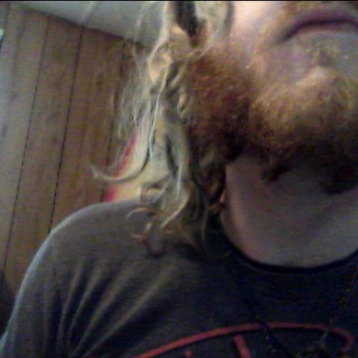 More Dreads In Mi Beard