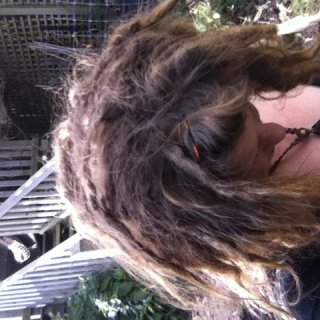 dem dreadies be shrinking even more