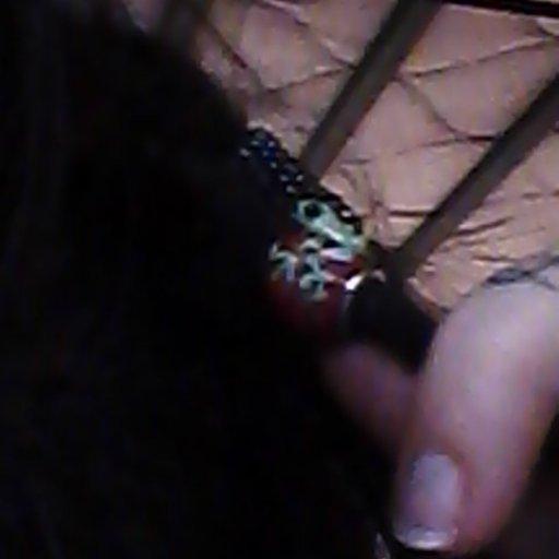 Frog bead.from hobby lobby