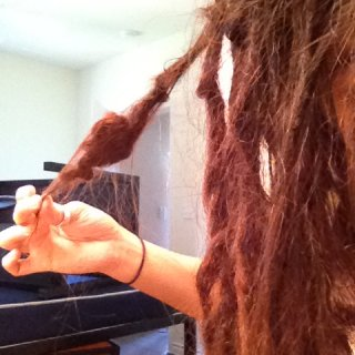 This lil' buddy is on the right side of my head. Where the most dreads reside and for some reason its shortened up to at least half the length it was when I first started them. Pretty cool, eh?