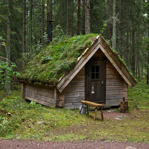 Forest huts