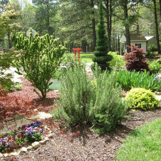 pop's herb & maple garden
