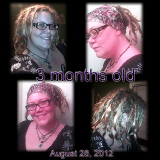 Part of my timeline. These are my 3 month of baby dreads