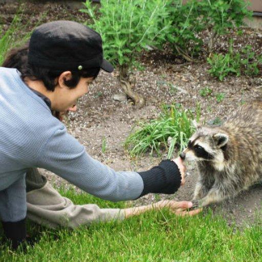 Liza feeding a racoon