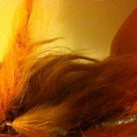 Photo uploaded on September 17, 2012