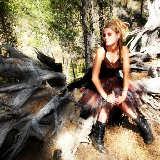 fallen down log roots looked like wings