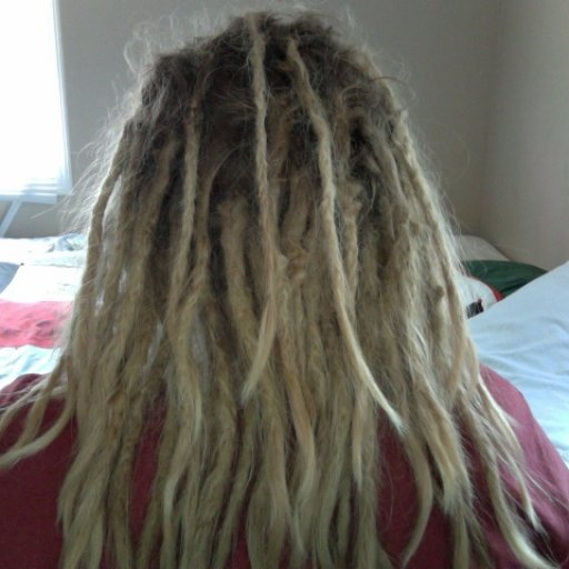 6 Month Old Dreads