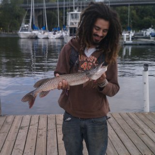 catch of the bay