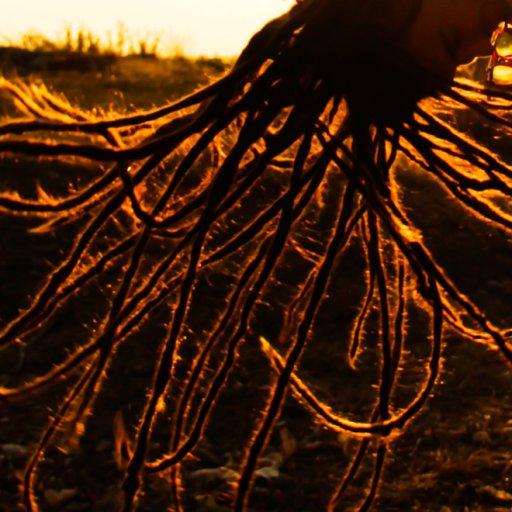 dreads on fire
