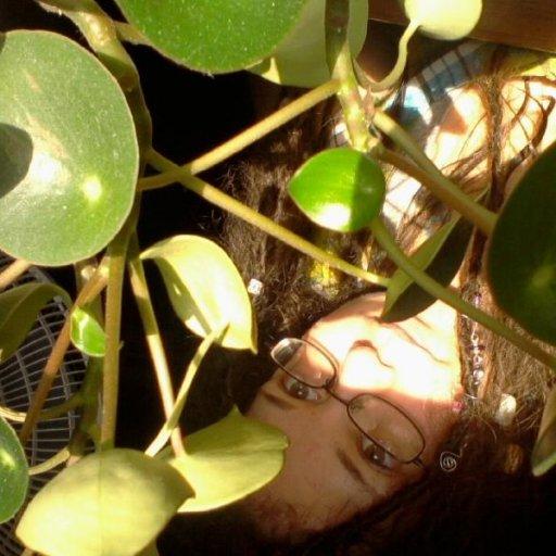 jazzymomma and jade plant