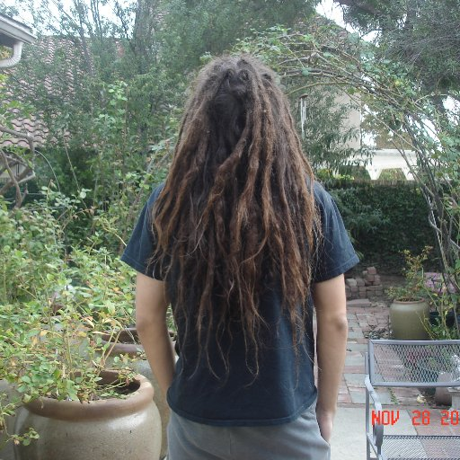 Back Combed 9 months in (2)