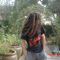 Back Combed 9 months in