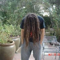 Back Combed about 9 months in