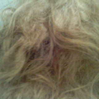 This is honestly embarrasing because i cant even tell i have dreads but ill figure something out
