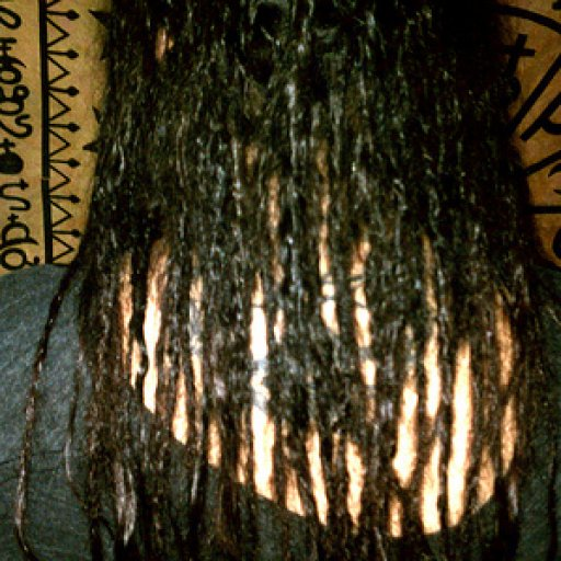 Baby dreads 2 days