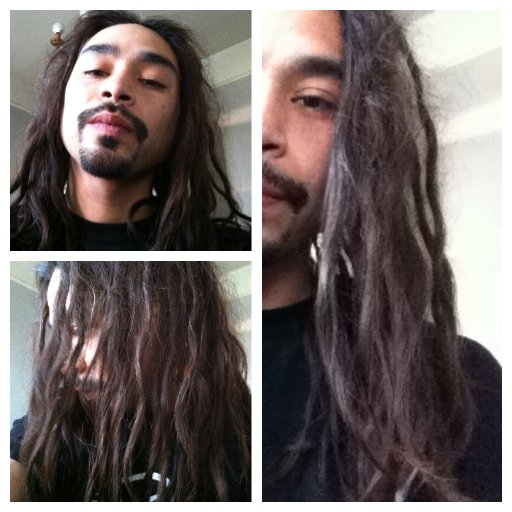 35 Week Old Dreads