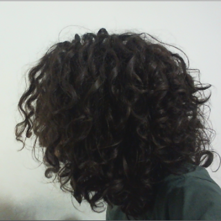 Full neglect from short curly hair...  the only maintenance that i do is separation...  i have something like 110 sections or more, i'll end with thinner dreads, just like i love it! <3