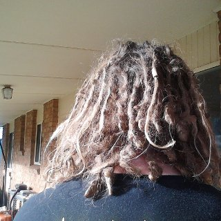 The photos are from a shoddy camera phone but hell yeah, 6 months with TnR dreads.