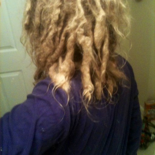 1 year natural dreads 2