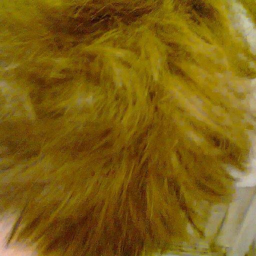 Crown of head 3 weeks old...