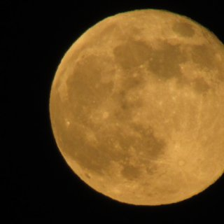 this is my shot of the super moon, taken on my parents second story roof on a tripod, took another 30 shots at least, this was the best one