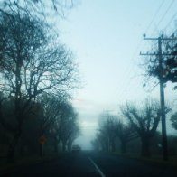 mist in the morning