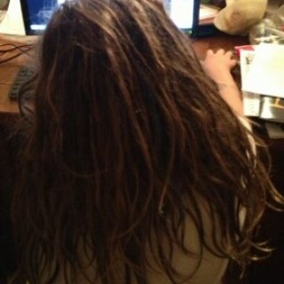 Willow looking at pics of dreads on this site(her sister in the upper corner making a silly face)