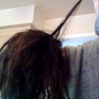 My hair dreads really fast. Things are coming along nicely.