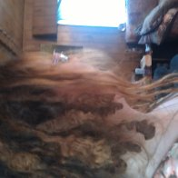 Dreads 4 months natural