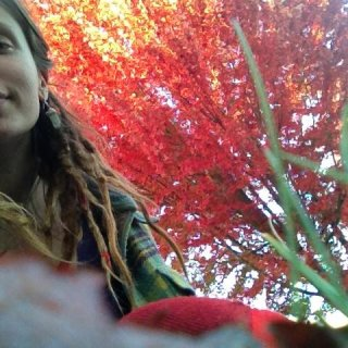 when the leaves turn red