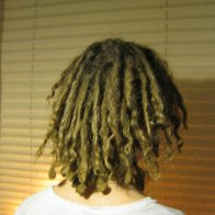 Dreads At 1 Year